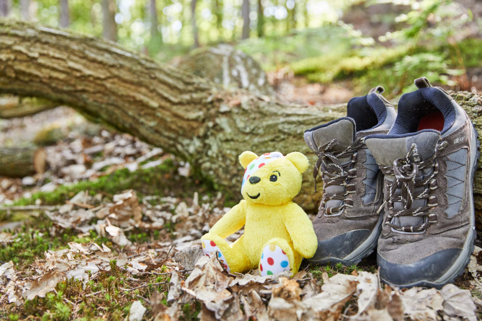 Pudsey bear in the forest
