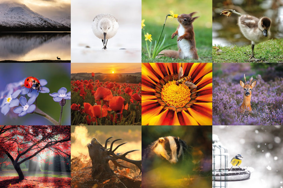 The winning images from the Countryfile Calendar